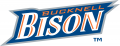Bucknell Bison 2002-Pres Wordmark Logo decal sticker