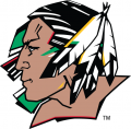 North Dakota Fighting Hawks 2007-2011 Primary Logo iron on sticker