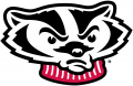 Wisconsin Badgers 2002-Pres Secondary Logo 02 decal sticker