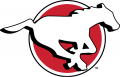 Calgary Stampeders 2016-2018 Primary Logo decal sticker
