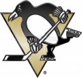Pittsburgh Penguins 2013 14 Special Event Logo iron on sticker