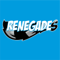 Hudson Valley Renegades 2013-Pres Cap Logo decal sticker
