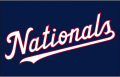 Washington Nationals 2018-Pres Jersey Logo decal sticker