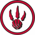 Toronto Raptors 2008-2012 Alternate Logo iron on sticker