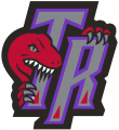 Toronto Raptors 1995-2006 Alternate Logo 01 iron on sticker