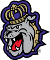 James Madison Dukes 2013-2016 Alternate Logo 01 decal sticker