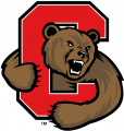 Cornell Big Red 1998-2001 Alternate Logo decal sticker