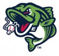 Gwinnett Stripers 2018-Pres Alternate Logo decal sticker