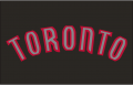Toronto Raptors 2008-2015 Jersey Logo iron on sticker