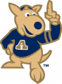 Akron Zips 2002-Pres Mascot Logo iron on sticker