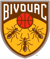 Bivouac 2019-Pres Primary Logo iron on sticker