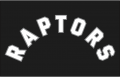 Toronto Raptors 2015-Pres Jersey Logo iron on sticker