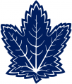 Toronto Maple Leafs 2000 01-2006 07 Alternate Logo 02 iron on sticker