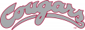 Washington State Cougars 1995-2010 Wordmark Logo decal sticker