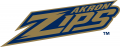 Akron Zips 2002-2013 Wordmark Logo iron on sticker