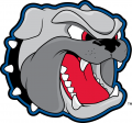 North CarolinaAsheville Bulldogs 1998-Pres Secondary Logo decal sticker
