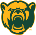 Baylor Bears 2005-2018 Alternate Logo 09 iron on sticker