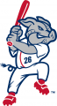 Lehigh Valley IronPigs 2008-Pres Alternate Logo decal sticker
