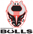 Birmingham Bulls 2017 18-Pres Primary Logo decal sticker