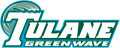 Tulane Green Wave 1998-2013 Wordmark Logo 03 decal sticker