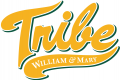 William and Mary Tribe 2016-2017 Alternate Logo decal sticker