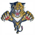 Florida Panthers Plastic Effect Logo decal sticker