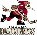 Tucson Roadrunners 2016 17-Pres Primary Logo decal sticker