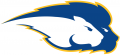 Hofstra Pride 2005-Pres Secondary Logo iron on sticker