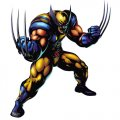 Wolverine Logo 02 decal sticker