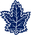 Toronto Maple Leafs 1992 93-1999 00 Alternate Logo iron on sticker