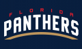 Florida Panthers 2016 17-Pres Wordmark Logo 03 iron on sticker