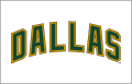 Dallas Stars 2008 09-2012 13 Jersey Logo decal sticker