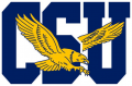 Coppin State Eagles 2017-Pres Primary Logo iron on sticker