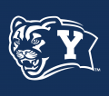 Brigham Young Cougars 2005-Pres Alternate Logo 02 iron on sticker