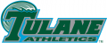 Tulane Green Wave 1998-2013 Wordmark Logo 01 decal sticker
