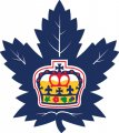 Toronto Marlies 2016 17-Pres Primary Logo decal sticker