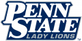 Penn State Nittany Lions 2001-2004 Wordmark Logo decal sticker