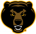 Baylor Bears 2005-2018 Alternate Logo 07 iron on sticker