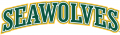 Alaska Anchorage Seawolves 2004-Pres Wordmark Logo 08 decal sticker