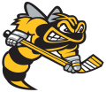 Sarnia Sting 2019 20-Pres Primary Logo iron on sticker