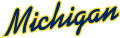Michigan Wolverines 1996-Pres Wordmark Logo 10 iron on sticker