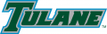 Tulane Green Wave 2014-Pres Wordmark Logo 04 decal sticker