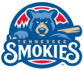 Tennessee Smokies 2015-Pres Primary Logo decal sticker