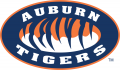 Auburn Tigers 1998-Pres Alternate Logo 04 iron on sticker