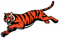 Cincinnati Bengals 1997-Pres Alternate Logo iron on sticker
