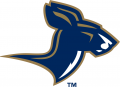 Akron Zips 2002-2007 Alternate Logo 02 iron on sticker