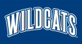 Villanova Wildcats 1996-Pres Wordmark Logo 01 decal sticker