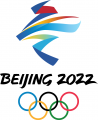 2022 Beijing Olympics 2022 Primary Logo iron on sticker