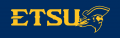 ETSU Buccaneers 2014-Pres Alternate Logo 10 iron on sticker