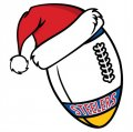 Pittsburgh Steelers Football Christmas hat logo decal sticker